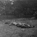 Confederate dead are posed at the edge of the Rose woods (July 5, 1863, James F. Gibson, photographer; Library of Congress)