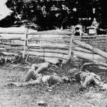 Soldiers of a Louisiana regiment near a fence (September 1862, Alexander Gardner, photographer; Library of Congress)