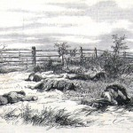 Over a half dozen dead Confederate soldiers line a fence along the Hagerstown road in this sketched reproduction of a photograph (Harper's Weekly, October 18, 1862; NPS Historical Collection)