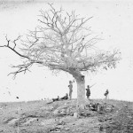 A solitary grave, a barren tree and several Union soldiers share a hilltop on the battlefield (September 1862, Alexander Gardner, photographer; Library of Congress)