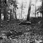 Bloody fighting occurred in the woods at the foot of Round Top, as can be seen by the corpses left throughout the area (July 1863, James F. Gibson, photographer; Library of Congress)