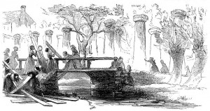 Pro-Union women from Martinsburg, Virginia, replacing planks on a bridge to allow Union forces to advance (Harper's New Monthly Magazine, April 1868: 570)