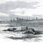 Two slain horses by the artillery caisson they had been conveying (Harper's Weekly, October 18, 1862; NPS Historical Collection)