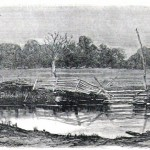 The wheat field where General Reynolds was shot during the first day of battle at Gettysburg (Harper's Weekly, August 22, 1862)