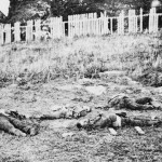 The bodies of dead soldiers are scattered about at the foot of a wooden fenced hill (September 1862, Alexander Gardner, photographer; Library of Congress)